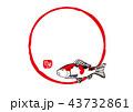 錦鯉 水彩画 43732861