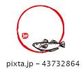 筆文字 魚 鰰のイラスト 43732864