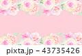 透明水彩 水彩画 薔薇のイラスト 43735426