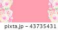 透明水彩 水彩画 薔薇のイラスト 43735431