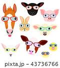 かわいい動物の子供たちの顔セット 眼鏡 43736766