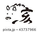 亥 猪 筆文字のイラスト 43737966
