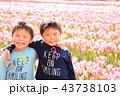 兄弟 人物 子供の写真 43738103