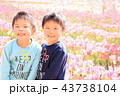 兄弟 人物 子供の写真 43738104