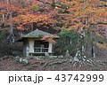 秋の西行庵 43742999