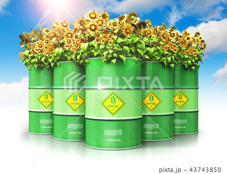 Green biofuel drums with sunflowers against sky 43743850