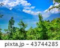 風景 森林 自然の写真 43744285