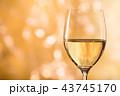 白ワイン 43745170