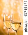 白ワイン 43745172