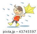 暴風雨 傘 台風のイラスト 43745597