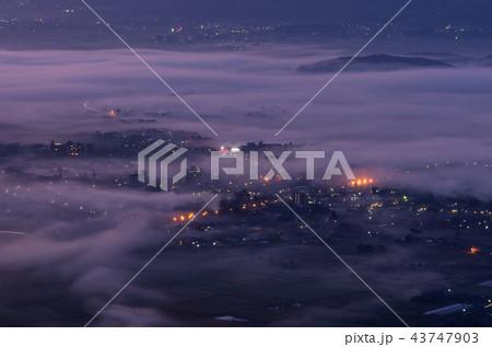 朝霧の街 43747903