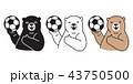 くま クマ 熊のイラスト 43750500
