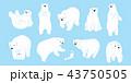 くま クマ 熊のイラスト 43750505