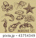 Marine animals collection illustration, 43754349