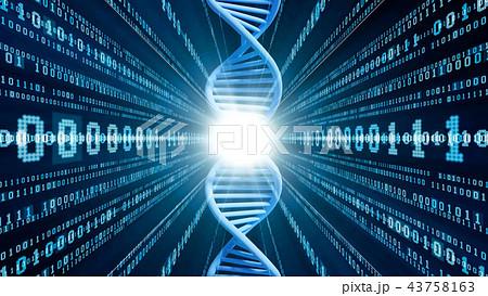 DNA 43758163