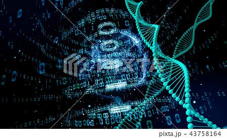 DNA 43758164
