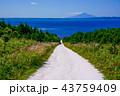 道 晴れ 風景の写真 43759409