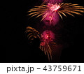 花火 夜 空の写真 43759671