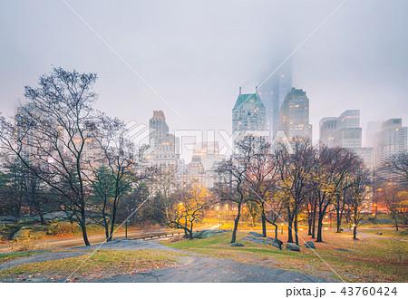 NY Central park at rainy morning 43760424