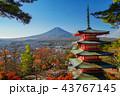 紅葉 秋 富士山の写真 43767145