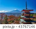 紅葉 秋 富士山の写真 43767146
