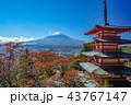 紅葉 秋 富士山の写真 43767147