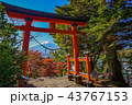 秋 富士山 鳥居の写真 43767153