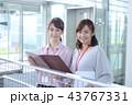カジュアル ビジネス 43767331