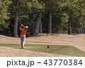 女性ゴルファー ティーショット プレイイメージ イメージ素材 43770384