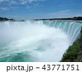Niagara Falls / ナイアガラフォールズ 43771751