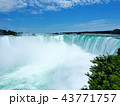 Niagara Falls / ナイアガラフォールズ 43771757