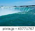 Niagara Falls / ナイアガラフォールズ 43771767