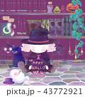 ハロウィン 魔女 魔法使いのイラスト 43772921