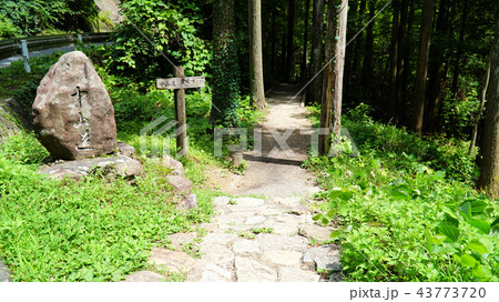 中仙道石畳 43773720