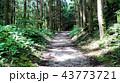 中仙道石畳 43773721