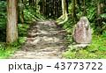 中仙道石畳 43773722