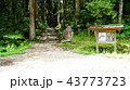 中仙道石畳 43773723