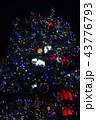 クリスマス・デコレーション(東京都武蔵野市) 43776793