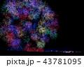 新潟県 長岡まつり大花火大会 43781095