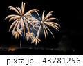 新潟県 長岡まつり大花火大会 43781256