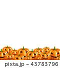 かぼちゃ 南瓜 区域のイラスト 43783796