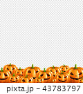 かぼちゃ 南瓜 ベクトルのイラスト 43783797