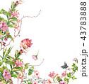 お花 フラワー 花のイラスト 43783888