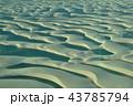 レンソイス 砂漠 砂丘の写真 43785794