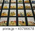カード ゲーム 日本の写真 43786678