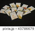 カード ゲーム 日本の写真 43786679