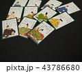 カード ゲーム 日本の写真 43786680