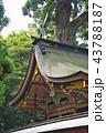 鹿島神宮 東国三社 神宮の写真 43788187