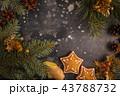 クッキー 装飾 飾りの写真 43788732