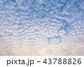 Beautiful cirrus clouds against the blue sky 43788826